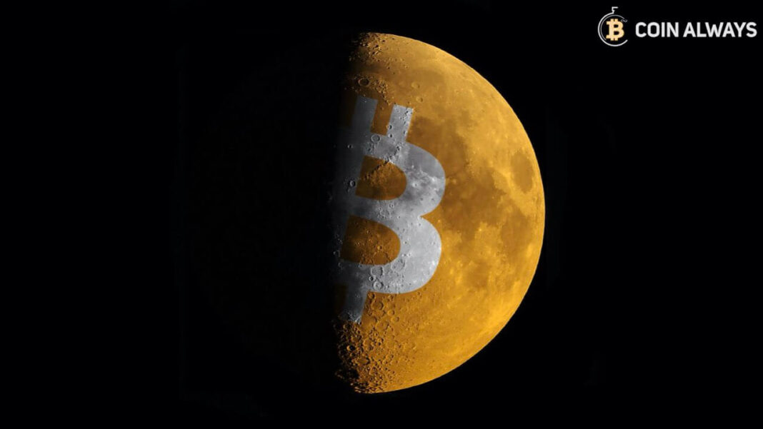 """6 Wildest Bitcoin Price Predictions: """"22.000 to 500.000 USD"""""""