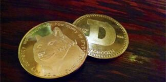 DOGE Up by 95 Percent, Breaking its Two-Year Record